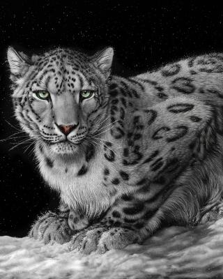 Snow Leopard para Nokia C3-01