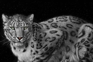 Snow Leopard para Nokia Asha 201