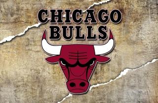 Chicago Bulls para Nokia X2-01