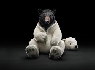 Polar Bear para LG E400 Optimus L3