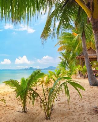 Palm Beach - Punta Cana para Huawei G7300