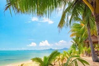 Palm Beach - Punta Cana