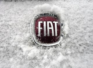 Fiat Car Emblem