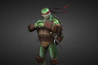 Raphael - Teenage Mutant inja Turtles para Sony Ericsson XPERIA X10 mini pro