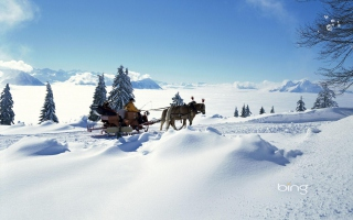 Winter Snow And Sleigh With Horses