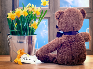 Teddy Bear with Bouquet para 220x176