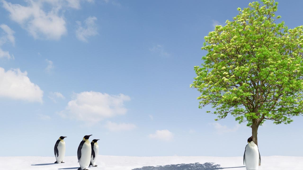 Penguins screenshot #1