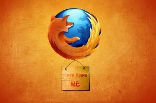 Firefox - Best Web Browser para Samsung S5367 Galaxy Y TV