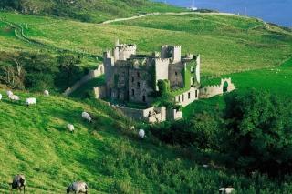 Medieval Castle para LG E400 Optimus L3