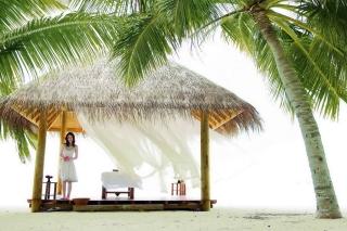 Tropical Asian Paradise