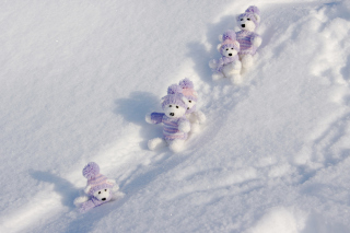 White Teddy Bears Snow Game