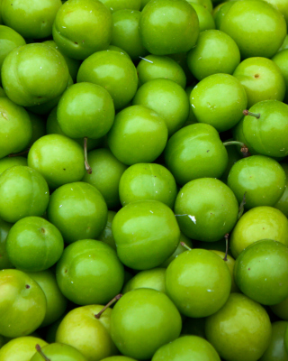 Green Apples - Granny Smith para LG T325 Cookie