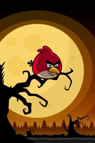 angry birds para huawei g7300