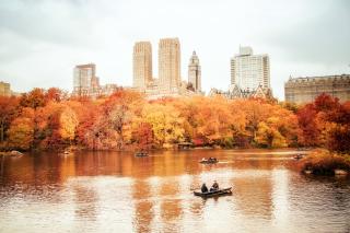 Autumn In New York Central Park