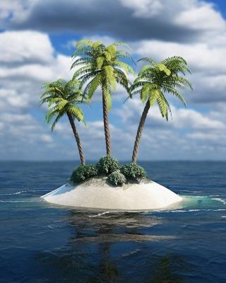 3D Palm Tree Island para Huawei G7300