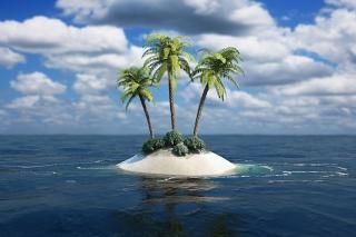 3D Palm Tree Island para LG E400 Optimus L3