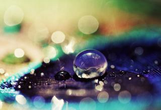 Amazing Water Drop Bokeh