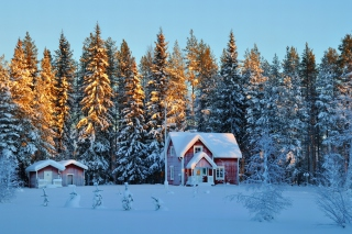 Home under Snow para Motorola RAZR XT910