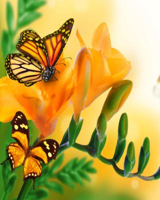 Orange Butterflies - Chlosyne gabbii for Nokia Asha 303
