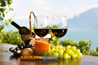 Picnic with wine and grapes