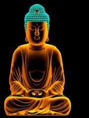 Buddha for Nokia Asha 303