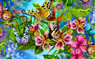 Discover Butterfly Meadow