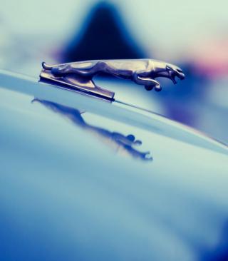 Jaguar for 480x854