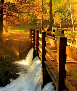 Wonderful Autumn Waterfall para Nokia 5230