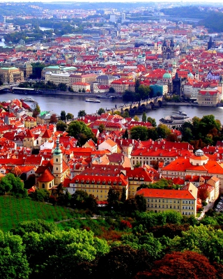 Prague Red Roofs for Nokia C5-05