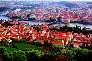 Prague Red Roofs per Nokia Asha 302