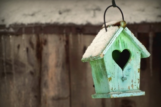 Valentine's Birds House