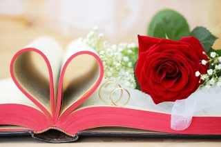 Wedding rings and book para Motorola RAZR XT910