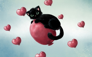 Black Cat O Heart