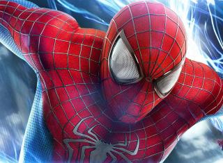 Spiderman para 220x176