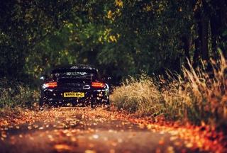 Rainy Autumn Road Drive