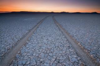 Car Trail Through Desert