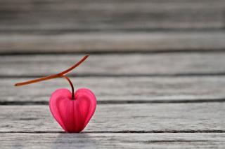 Heartshaped Petal