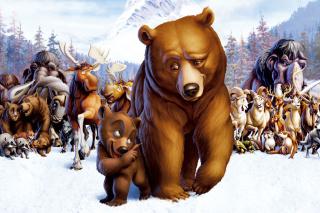 Brother Bear Cartoon