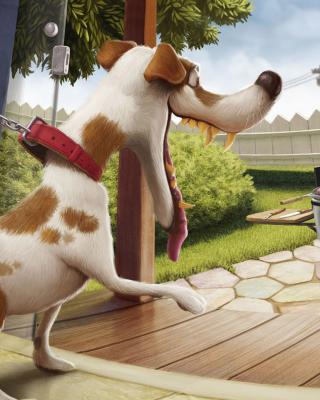 Funny Dog para Samsung GT-S5230 Star