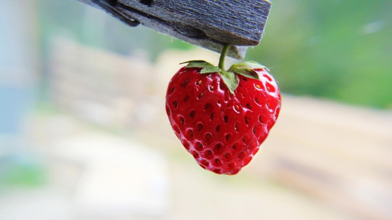 Red Strawberry Heart screenshot #1