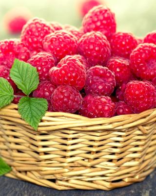 Basket with raspberries para Samsung GT-S5230 Star
