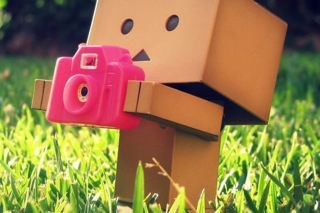 Danbo Is A Photographer