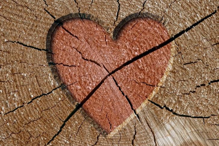 Wooden Heart screenshot #1