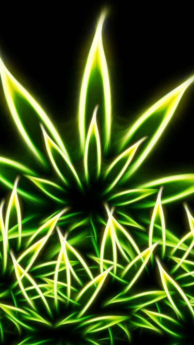 Abrió en Córdoba la primera clínica de la marihuana