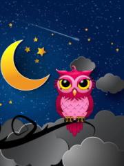 Silent Owl Night para LG T325 Cookie