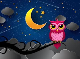Silent Owl Night para 220x176