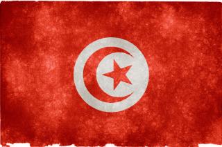 Tunisia Flag para Nokia X2-01