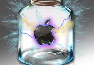 Apple In Bottle