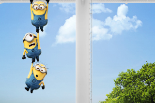 Despicable me 2, Minions para Samsung S5367 Galaxy Y TV