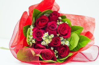 Romantic and Elegant Bouquet para Samsung S5367 Galaxy Y TV